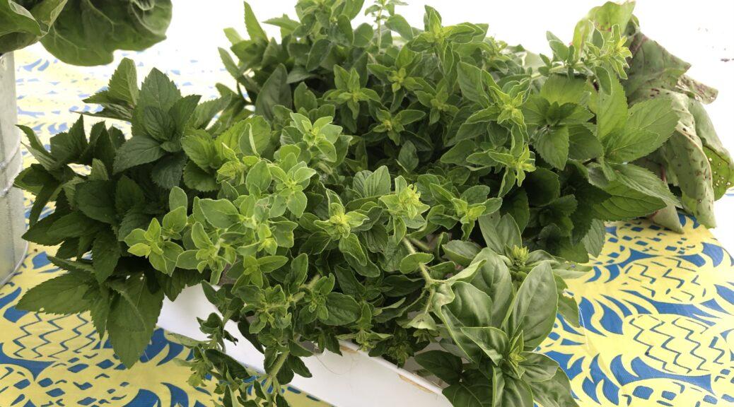 Farm Fresh Herbs!
